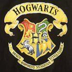Wappen von Hogwarts