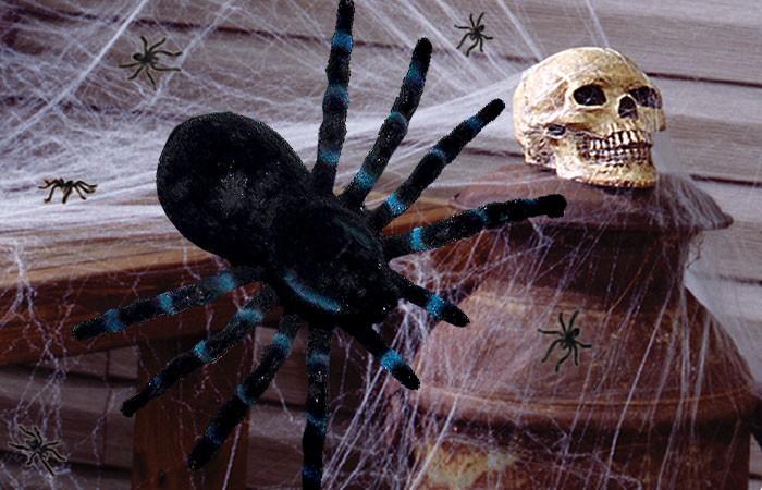 Spinnendeko